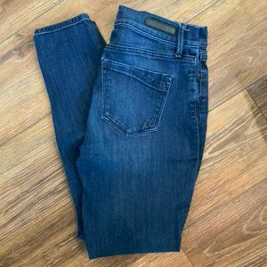 Blue Wash Denim Skinny Jeans